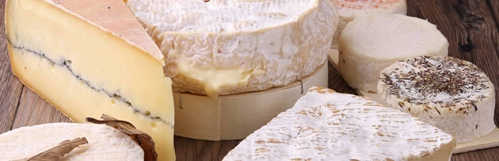 Cheesemaking courses the Garden Route